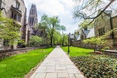 耶鲁大学在纽黑文康涅狄格 免版税库存照片