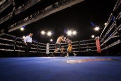 职业拳击在菲尼斯,亚利桑那 免版税图库摄影