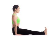 职员瑜伽姿势 库存照片