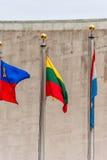 联合国挥动的旗子 立陶宛旗子在中部 列支敦士登,卢森堡 免版税库存图片