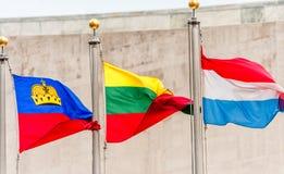 联合国挥动的旗子 立陶宛旗子在中部 列支敦士登,卢森堡 免版税库存照片
