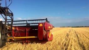联合收割机会集麦子庄稼 收获剪的麦子 在领域的组合 steadicam射击 食品工业 股票录像