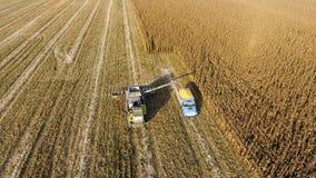 联合收割机倾吐玉米五谷入卡车身体 Harveste 免版税库存图片