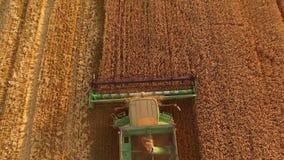 联合收割机切口麦子 股票视频
