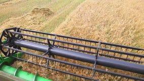 联合收割机割大麦的领域 股票录像