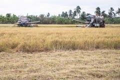 联合收割机机器收割稻 库存照片