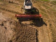 联合收割机-现代联合收割机鸟瞰图在收获麦子的在金黄麦田在夏天 免版税库存照片