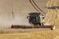 联合收割机-种田-农业 免版税库存图片