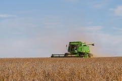 联合的大豆收获 免版税库存照片