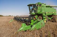 联合的大豆收获 图库摄影