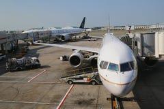联航和阿那星空联盟飞行在门在终端7在约翰・肯尼迪国际机场 免版税库存照片