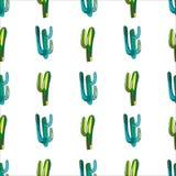 聪慧的可爱的逗人喜爱的老练美丽的仙人掌油漆的墨西哥人夏威夷热带花卉草本夏天绿色样式喜欢孩子 向量例证