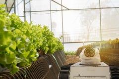 聪明机器人在农业未来派概念,机器人农夫自动化在垂直或室内f必须编程工作 库存图片