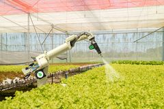 聪明机器人在农业未来派概念,机器人农夫自动化必须编程工作喷洒化学制品,肥料 免版税图库摄影