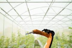 聪明机器人在农业未来派概念,机器人农夫 免版税库存图片