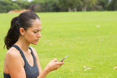 聪明电话发短信的年轻西班牙妇女 库存照片