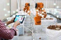 聪明的机器人农夫在农业技术未来派机器人自动化收获工作技术增量 库存图片