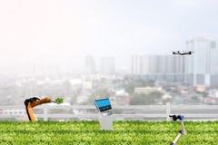 聪明的种田的概念,在农业野外工作的机器人在ur 库存图片