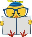 聪明的鸡读书 免版税库存图片