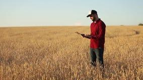 聪明种田使用在农业的现代技术 农艺师农夫举行和接触数字式片剂计算机 股票录像