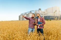 聪明种田使用在农业的现代技术 供以人员有数字式片剂计算机的农艺师农夫在麦子 免版税图库摄影