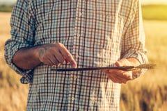 聪明种田,使用在农业的现代技术 免版税库存图片