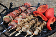 肉、蘑菇和蕃茄串  库存图片