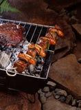 肉串 库存图片