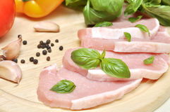 肉加香料蔬菜 免版税库存照片