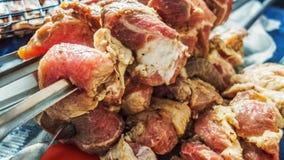 肉原始的串 库存照片