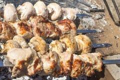 肉和蘑菇串在野餐 免版税库存照片