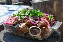 肉在串烤了开火用烂醉如泥的葱和绿色在自然背景  免版税库存照片