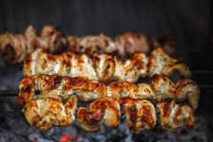 肉在格栅的火被烤 免版税库存图片