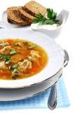 肉德国泡菜汤 免版税图库摄影