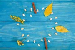 肉桂条和南瓜籽以一个时钟的形式在蓝色木背景 免版税库存图片