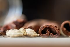 肉桂条和茴香籽 免版税库存图片