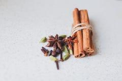 肉桂条和香料 免版税库存照片