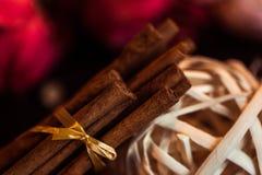 肉桂粉,肉桂条,连接用有一把弓的一个盘子在一个土气样式的颜色背景 宏观照片 免版税图库摄影