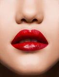 肉欲特写镜头红色嘴唇的构成 免版税库存照片