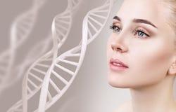 肉欲的妇女画象在脱氧核糖核酸链子中的 库存照片