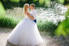 肉欲的容忍新娘和新郎根据日落 库存照片