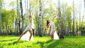 肉欲的服装的两位女性舞蹈家在晴朗的桦树树丛执行 股票视频