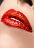 肉欲的红色嘴唇组成特写镜头 免版税库存图片