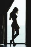 肉欲的美丽的年轻女性剪影后面看法  库存照片