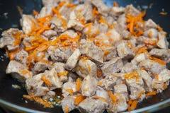 肉片用红萝卜炖煮的食物 库存图片