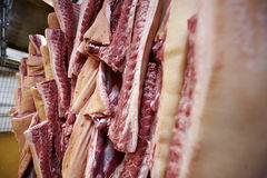 肉猪肉 库存图片