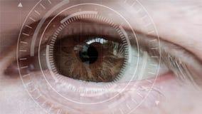 肉眼和抽象高科技圈子 股票录像