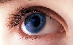 肉眼蓝色 库存照片
