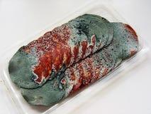 肉腐烂的蒜味咸腊肠 免版税库存图片