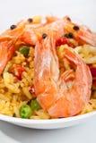 肉菜饭西班牙语 免版税库存图片